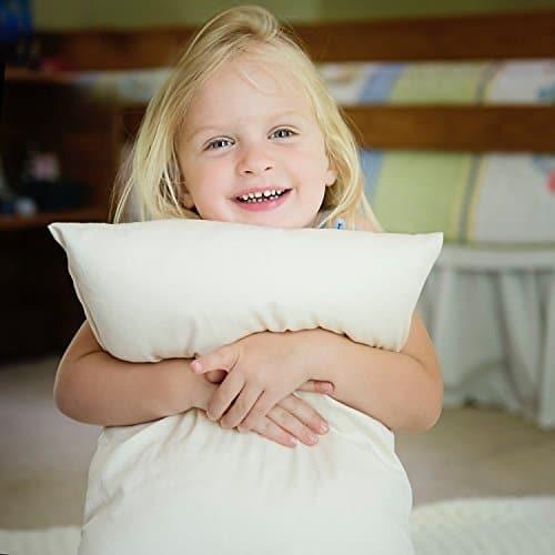 pillows king natural goose naturalnights down pillow products organic p night nights fill k x large power
